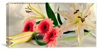 A Collection Of Flowers, Canvas Print
