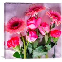 A Collection of Pink, Canvas Print