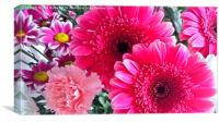 Variety of Pink, Canvas Print