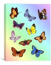 Bright Butterflies, Canvas Print