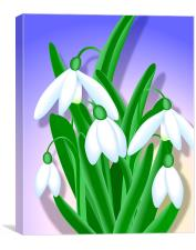 Snowdrops Close-up, Canvas Print