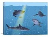 Sharks in Ocean, Canvas Print