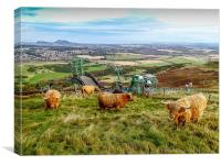 Coos with a view, Canvas Print