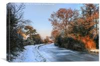 Snowy Penkridge Canal, Canvas Print