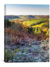 Countryside in Bilsdale near Helmsley in the North, Canvas Print
