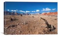 Red Rock Canyon, Canvas Print