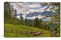 Alpine Beauty, Canvas Print