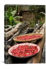Drying the Chilies 2, Canvas Print