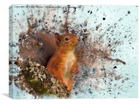 Red Squirrel in Danger, Canvas Print