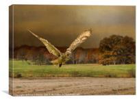 Eagle Owl Hunting, Canvas Print