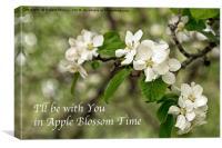 Apple Blossom Time, Canvas Print