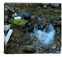 Small Creek  , Canvas Print