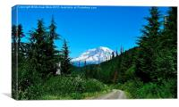 Mt Rainier 1 , Canvas Print