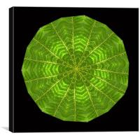 Circular composite of fern leaf., Canvas Print