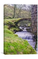 Fell End Gill. Dentdale, North Yorkshire, Canvas Print