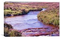 Wheeldale, North York Moors, Canvas Print