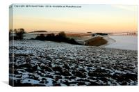Early Morning on the Yorkshire Wolds, Canvas Print