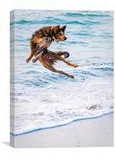 Kung fu Dog, Canvas Print