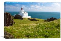 Pembrokeshire Skokholm Lighthouse, Canvas Print