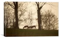 Twilight Graze, Canvas Print