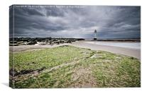 SeaWeed at New Brighton Lighthouse, Canvas Print
