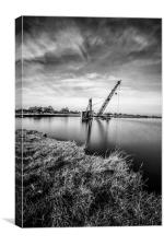 Little wet Crane, Canvas Print