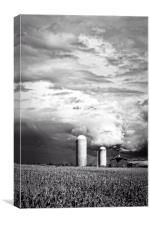 Stormy Farm Landscape, Canvas Print
