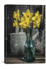 Spring Daffodil Flowers, Canvas Print