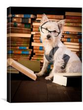Dog reading books, Canvas Print