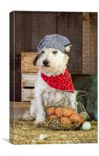 Farmer dog in the hen house, Canvas Print
