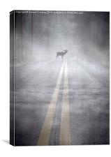 Danger in the road, Canvas Print