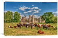 Ruins of Cowdray House Midhurst West Sussex, Canvas Print