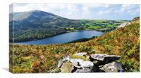 Loweswater from Darling Fell, Canvas Print