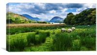 Sheep Grazing At Loweswater, Canvas Print