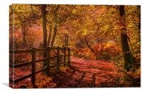 Mendelsshon's Walk, Burnham Beeches. , Canvas Print