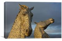 Golden Kelpies, Canvas Print