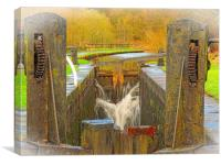 Leaky Lock          , Canvas Print