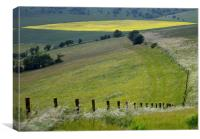 The Angles and colours of the Ditchling South Down, Canvas Print