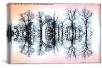 Symmetrical Trees , Canvas Print