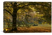 London Park 2 Autumn, Canvas Print