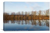 Whitlingham Broad Tree Reflections, Canvas Print