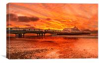 Under the fire sky., Canvas Print