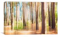 Into the woods, Canvas Print