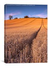 Harvest Time, Canvas Print