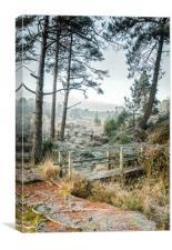 Bystock Ponds, Canvas Print