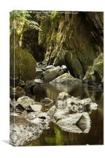 Fairy Glen, Betws Y Coed, Snowdonia National Park, Canvas Print