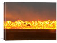 Napalm and Warbirds, Canvas Print
