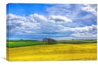 Summer Fields, Canvas Print