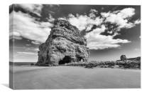 Marsden Rock., Canvas Print