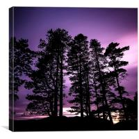Towering Silhouettes, Canvas Print